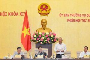 Thanh Hóa sẽ giảm 76 đơn vị cấp xã, Hải Dương, Bắc Ninh mở rộng thành phố