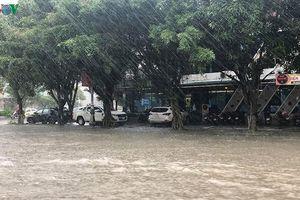 Nhiều trường ở Nghệ An Hà Tĩnh cho học sinh nghỉ học do mưa lớn