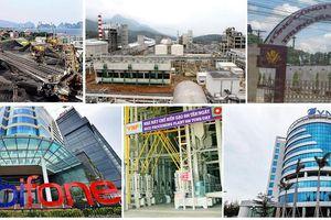 Lùi lộ trình cổ phần hóa 6 doanh nghiệp nhà nước