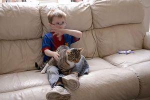 Khi mèo cưng hóa siêu anh hùng cứu người gây choáng váng (1)