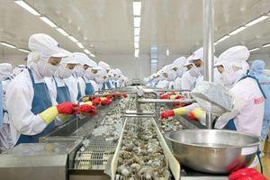 Người phát ngôn Bộ Ngoại giao: Việt Nam có nhiều nỗ lực quyết liệt nhằm gỡ thẻ vàng thủy sản của EU