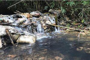 Nước sạch bị nhiễm dầu thải:Hà Nội lại 'mất điểm' vì quá chậm trễ!