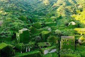 Khám phá một làng đẹp như tranh vẽ Hậu Рầu Loan