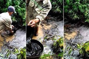 Khởi tố vụ án gây ô nhiễm nước sạch sông Đà cấp cho dân Hà Nội