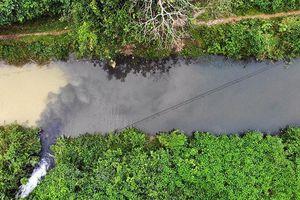 Khởi tố vụ án hình sự đổ trộm dầu thải tại khu vực nhà máy nước sông Đà