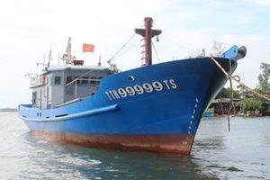 Nhiều tàu cá phải nằm bờ do hoạt động không hiệu quả