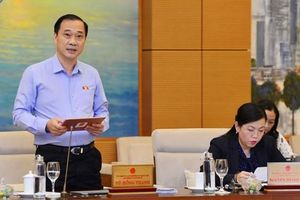 Đề nghị điều chỉnh diện tích đất Cảng hàng không quốc tế Long Thành
