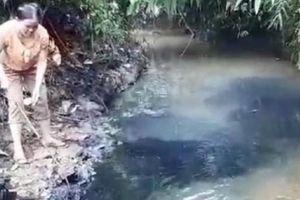 Gây ô nhiễm nguồn nước có thể bị phạt tù tới 7 năm