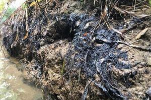 Triệu tập một số đối tượng để điều tra vụ đổ dầu thải ở Hòa Bình