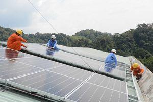 Loay hoay phát triển điện Mặt Trời áp mái tại Ninh Thuận