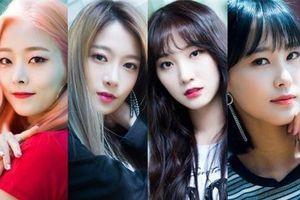 Sau màn tan rã khó hiểu, 4 cựu thành viên PRISTIN về chung công ty mới và chuẩn bị debut vào cuối năm?