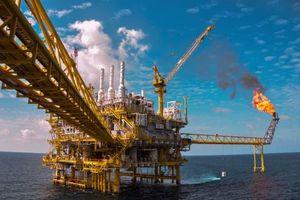 Giá dầu thô giảm do dự trữ dầu thô tại Hoa Kỳ tăng