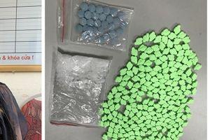 Hải Phòng: Phá đường dây vận chuyển ma túy do nữ Việt kiều cầm đầu