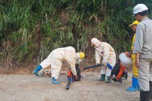 Khử trùng khu vực đổ dầu thải làm ô nhiễm nguồn nước sông Đà bằng 'vi sinh ăn dầu'