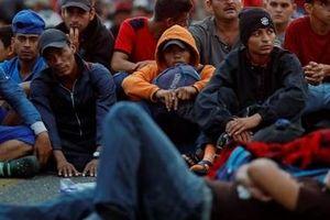 Người di cư bị Mỹ trả về Mexico nguy cơ rơi vào vòng xoáy buôn người