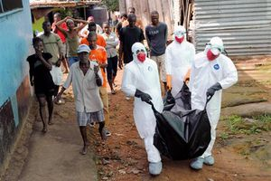 Biến đổi khí hậu khiến dịch Ebola lây lan khắp thế giới
