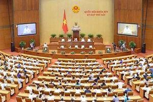 Hôm nay, Quốc hội khóa XIV khai mạc Kỳ họp thứ tám