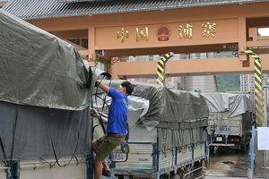 Bộ NN&PTNT phối hợp giải quyết nhanh 500 xe hàng nông sản ùn ứ