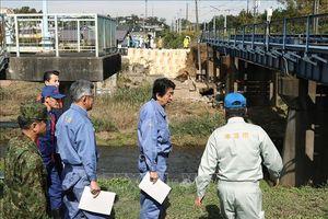 Chính phủ Nhật Bản lập chương trình hỗ trợ các nạn nhân của siêu bão Hagibis