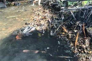 Bắt đối tượng thứ ba trong vụ đổ chất thải gây ô nhiễm nguồn nước sông Đà