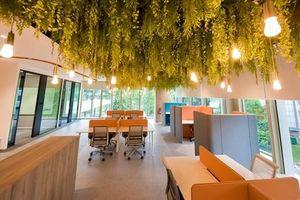 Khám phá văn phòng mới của một trong những startup 'kỳ lân' Đông Nam Á