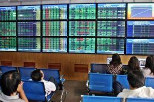 Cổ đông lớn của Công ty CP Đầu tư BVG dính 'án phạt'