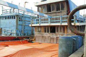 Tàu cá tiền tỉ đắp chiếu và 'nghề' trông tàu không công ở cảng Tịnh Hòa