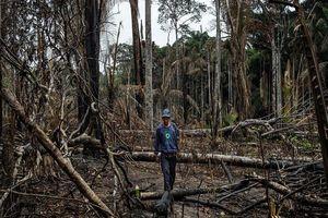 Khốc liệt cuộc chiến bảo vệ rừng của các bộ lạc Amazon