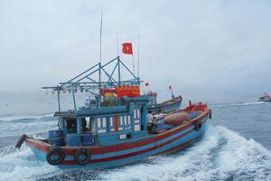 Trung Quốc thường xuyên xâm phạm chủ quyền Việt Nam