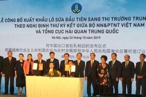 Xuất khẩu lô sữa đầu tiên sang Trung Quốc - dấu mốc quan trọng của ngành nông nghiệp Việt Nam