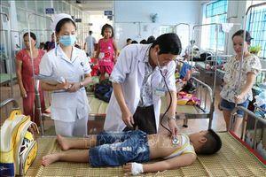 Trong 10 tháng, bốn người tử vong do sốt xuất huyết tại Đắk Lắk