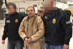 Mexico điều tra vụ vây bắt con trai trùm ma túy Joaquin 'El Chapo' Guzman