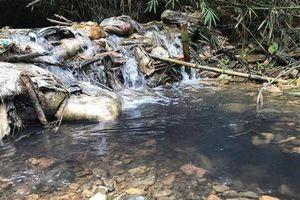 Bí ẩn chủ mưu thực sự đổ dầu thải làm ô nhiễm nước Sông Đà