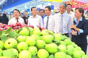 Nâng giá trị gia tăng, đẩy mạnh thương mại hóa nông sản