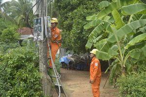 PC Bình Định: Tiếp tục nhận lưới điện hạ áp nông thôn