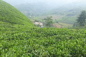 Đến với Thái Nguyên: Không chỉ có mỗi Hồ Núi Cốc