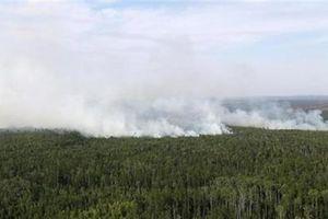 Đại biểu Duma Nga nói về việc bán rừng cho Trung Quốc