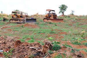 Bình Phước thu hồi hơn 100ha đất giao cho dân sử dụng