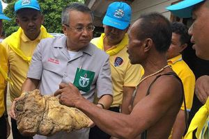 Thái Lan: Ngư dân tìm thấy vật thể lạ, nghi Long Diên Hương trị giá 500.000 USD