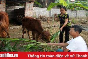 Huyện Nông Cống có 50% số xã đạt chuẩn nông thôn mới