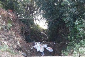 7 bao tải lợn chết bị vứt ở mương nước chảy xuống sông Lam