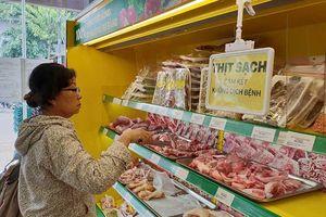 PGS-TS Phạm Khánh Phong Lan: Xin duy trì 'xây sạch, chống bẩn'