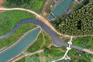 'Lật tẩy' vụ đổ trộm dầu thải gây ô nhiễm nguồn nước Sông Đà