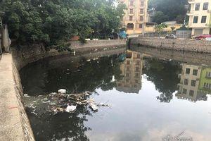 Cá chết kín hồ điều hòa ở Quảng Ninh, dọn cá không dọn rác