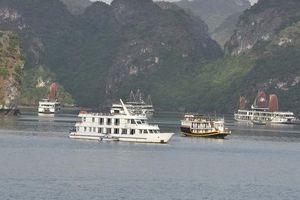 Từ tháng 1/2020, du khách có thể phải trả cả triệu đồng để tham quan trên vịnh Hạ Long