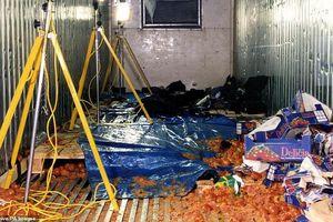 Lời kể của người sống sót vụ 58 tử thi TQ trong xe cà chua