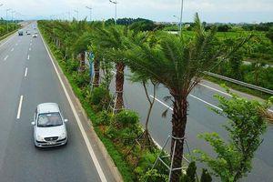 Hà Nội xin cơ chế đặc thù trồng 600 nghìn cây xanh không qua đấu giá