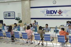 BIDV bất ngờ thông báo trả cổ tức bằng tiền mặt