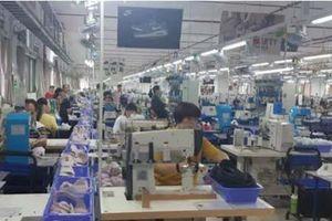 Vụ công nhân liên tiếp nhập viện ở Nam Định: Binh chủng Hóa học vào cuộc điều tra nguyên nhân