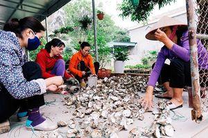 Quảng Ninh: Nhiều giải pháp tạo việc làm cho người lao động
